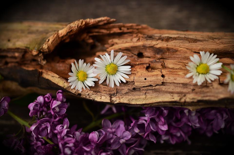 Spiritual Uplifting during Life Challenges